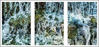 shaw falls triptych dark R