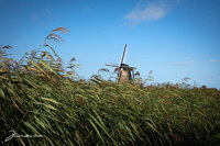 UNESCO Windmills in the Netherlands