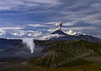 515 Mount Bromo. Java. Indonesia
