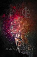 y_D12193 Fireworks