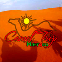 Camel Trip Marroco Photo Facebook 3