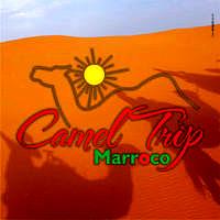 Camel Trip Marroco Photo Facebook 3