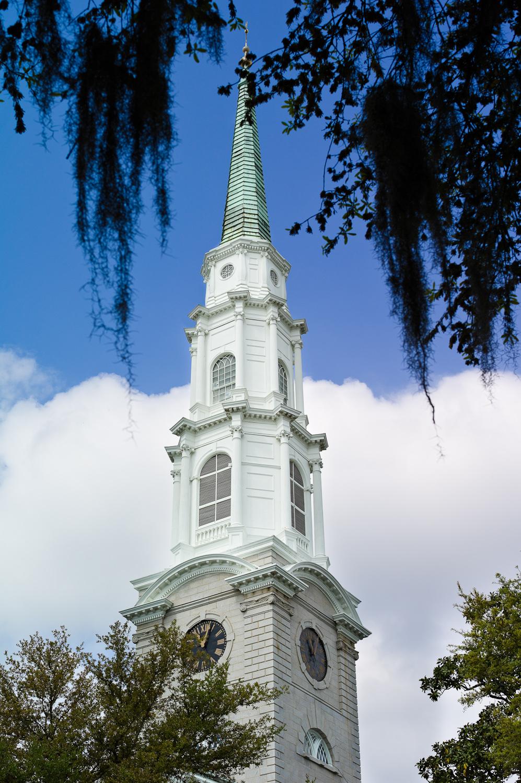 LHSA Savannah 2010-1101
