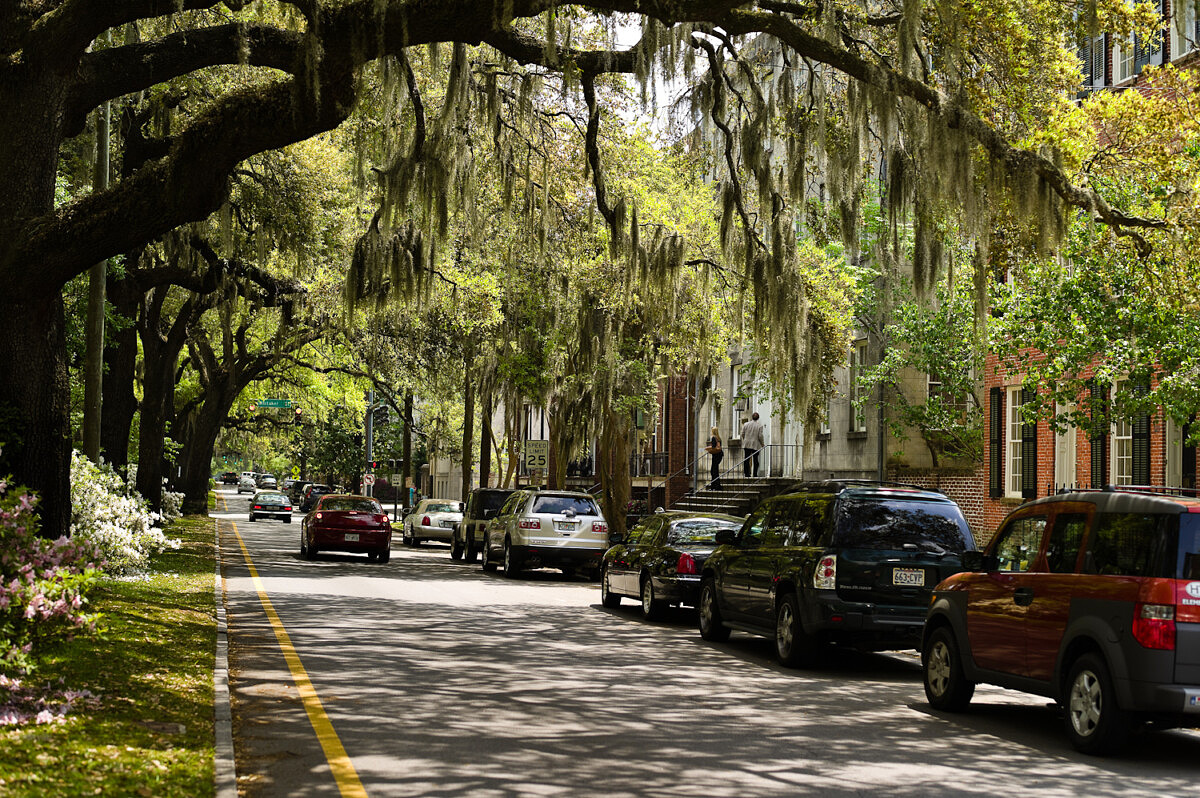 LHSA Savannah 2010-1192