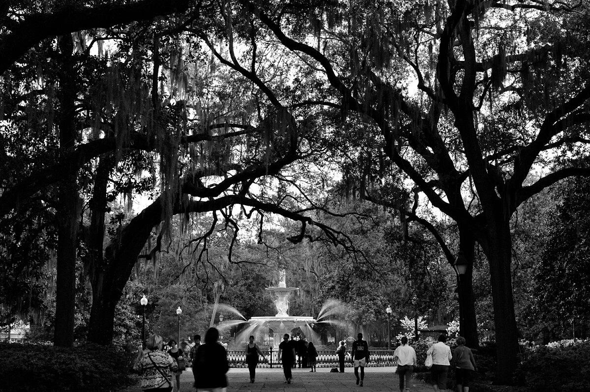 LHSA Savannah 2010-1235