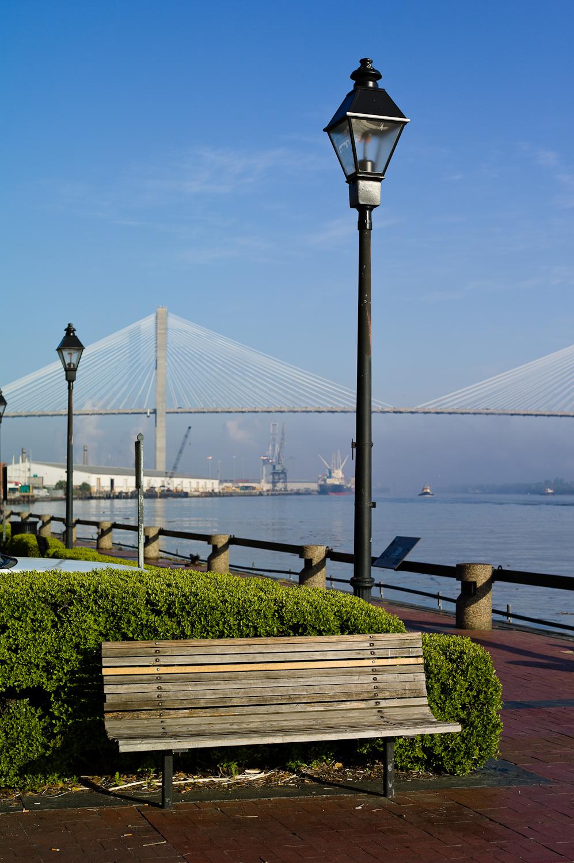 LHSA Savannah 2010-1269