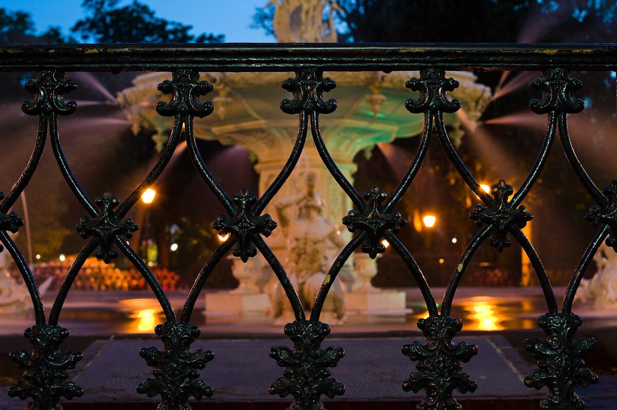 LHSA Savannah 2010-1277