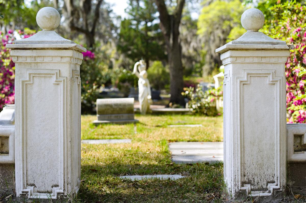 LHSA Savannah 2010-1543