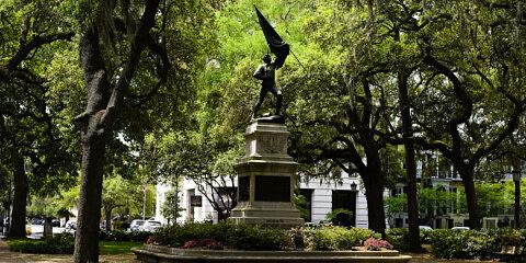 LHSA Savannah 2010-1602