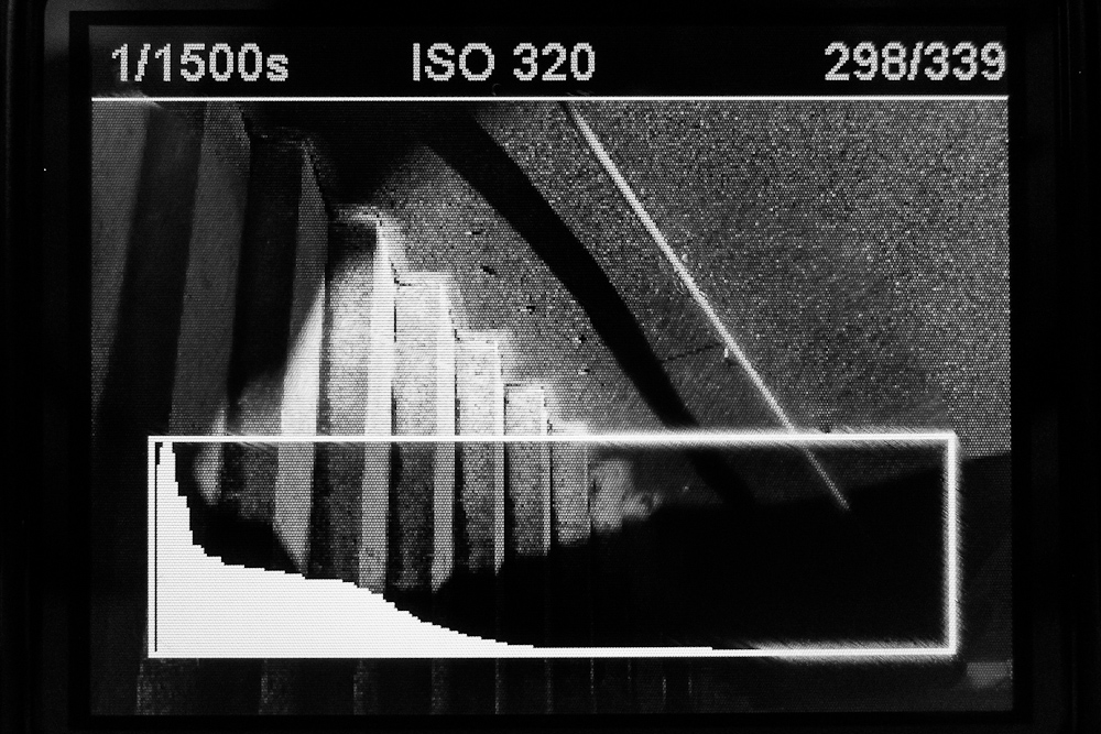 Image review with overlaid RAW histogram