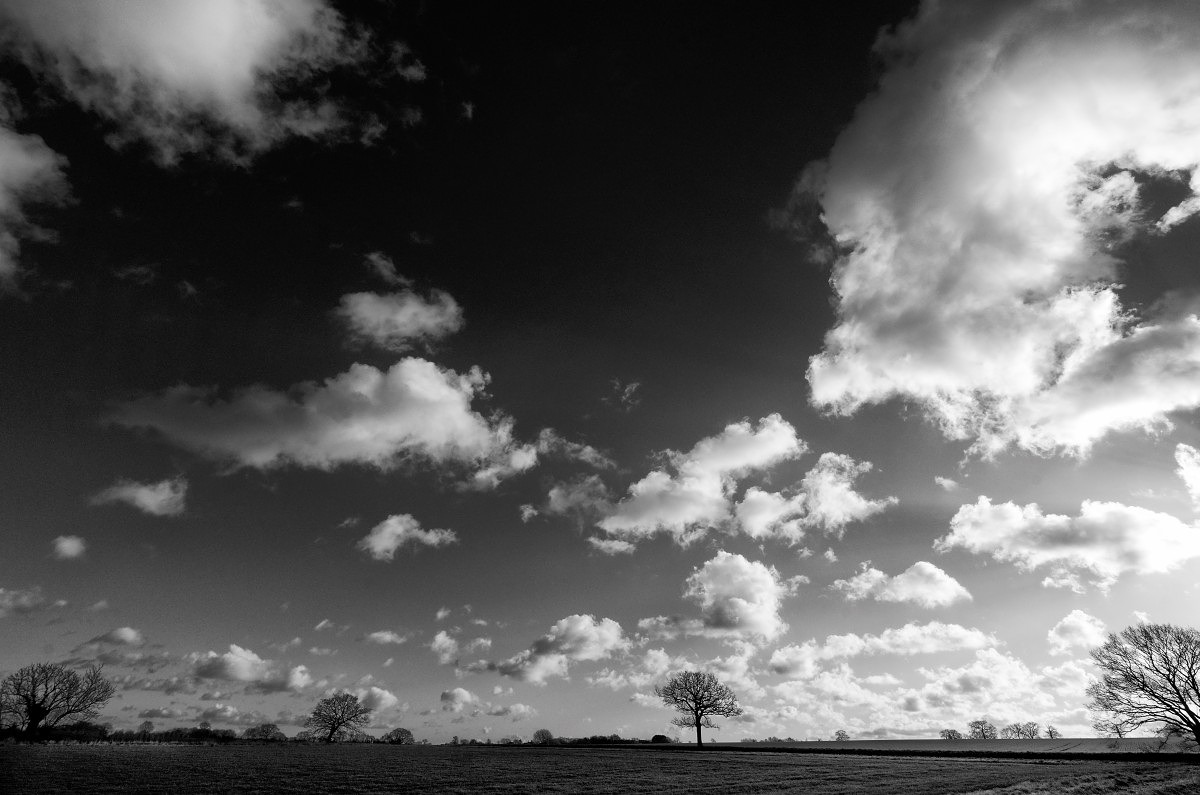 Suffolk- with the 11-23mm Super Vario Elmar at 23mm