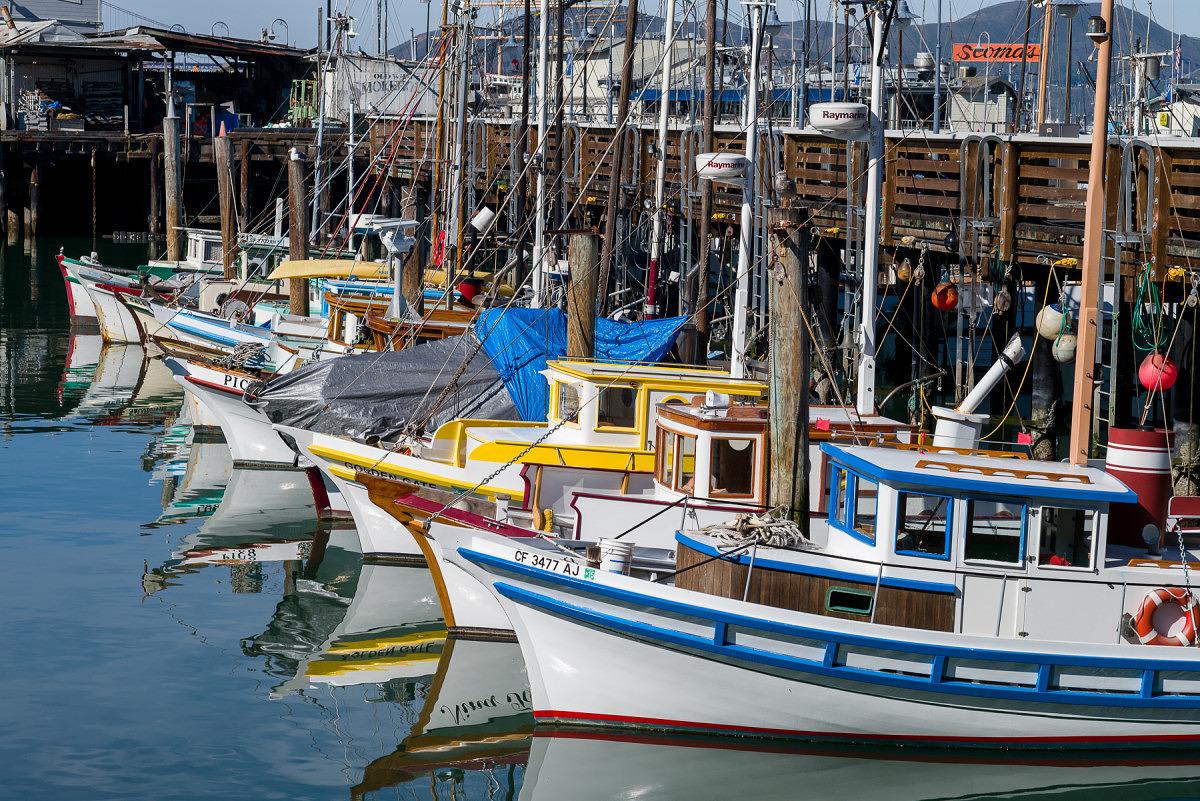 Fishing Boats Bows - 1