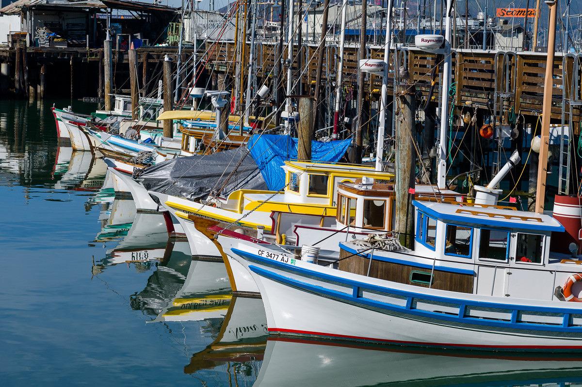 Fishing Boats Bows - 2