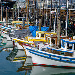 Fishing Boats Bows - 2