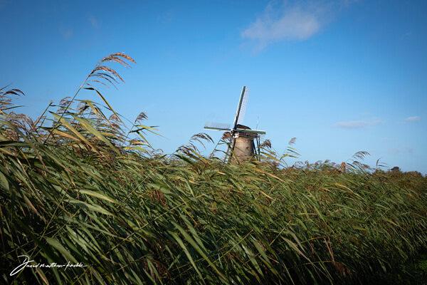 UNESCO Windmills in the Netherlands