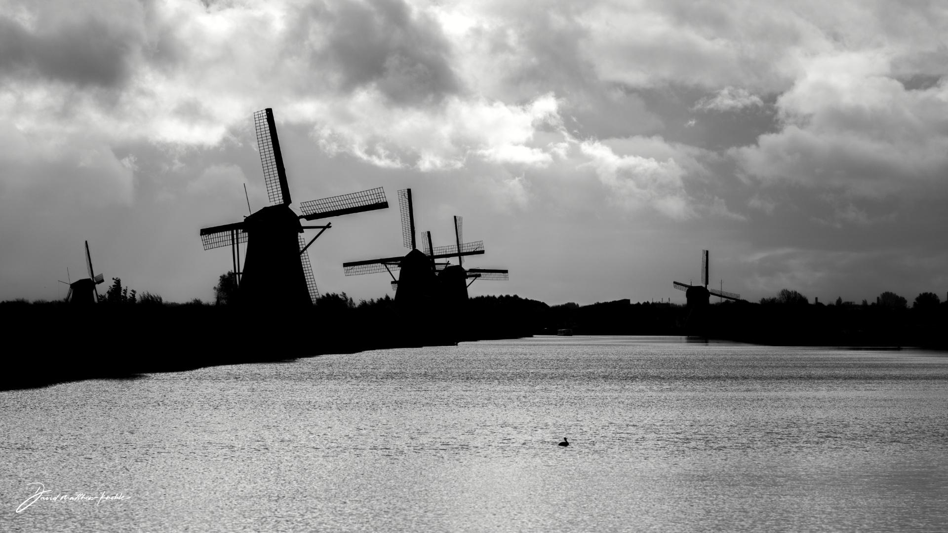 unesco-windmills-in-the-netherlands-3
