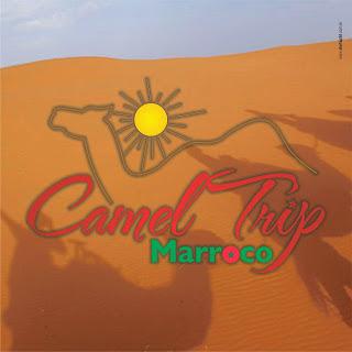 camel-trip-marroco-photo-facebook-3
