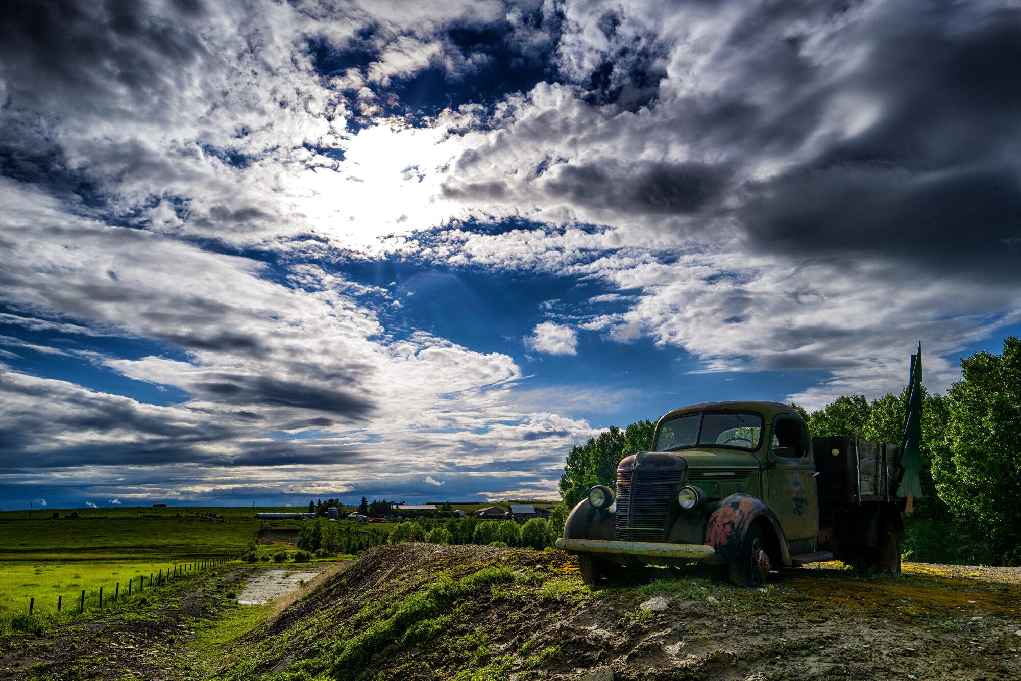 tree-farm-truck